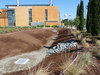Photo by UC Davis