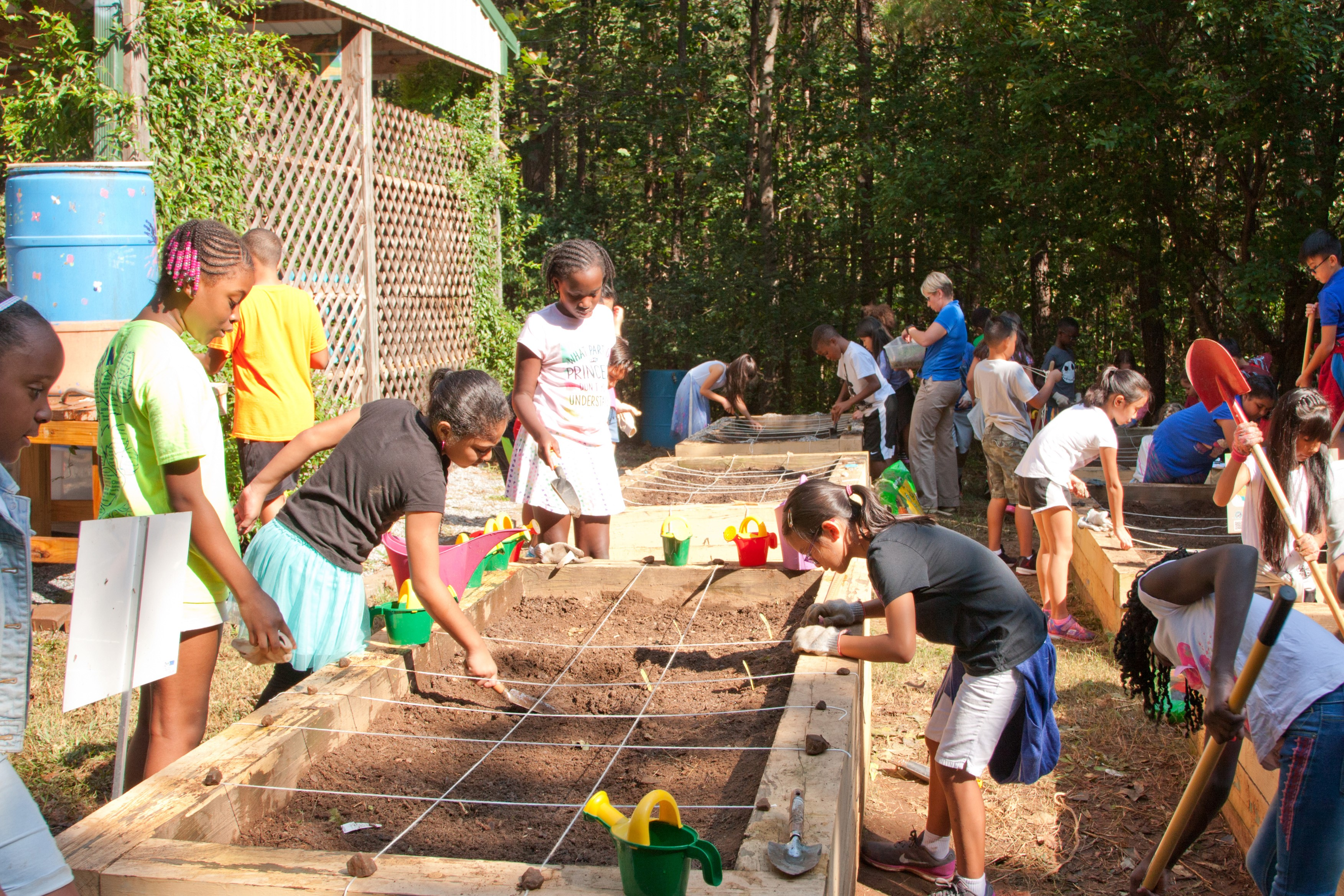 Mason Elementary students gardening