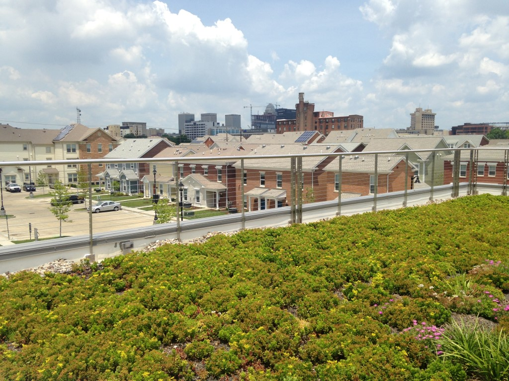 Community center green roof
