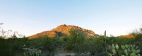Regional advocate spotlight: Julie Hendricks (USGBC Arizona)