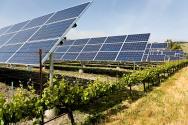The Biden administration takes shape around sustainability